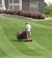 worker-on-mower-sulky